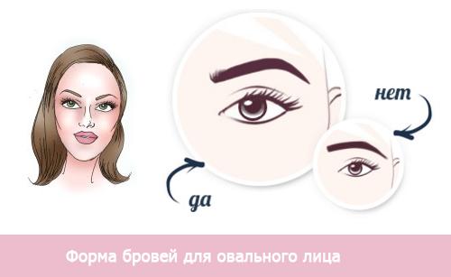 форма бровей для овального типа лица